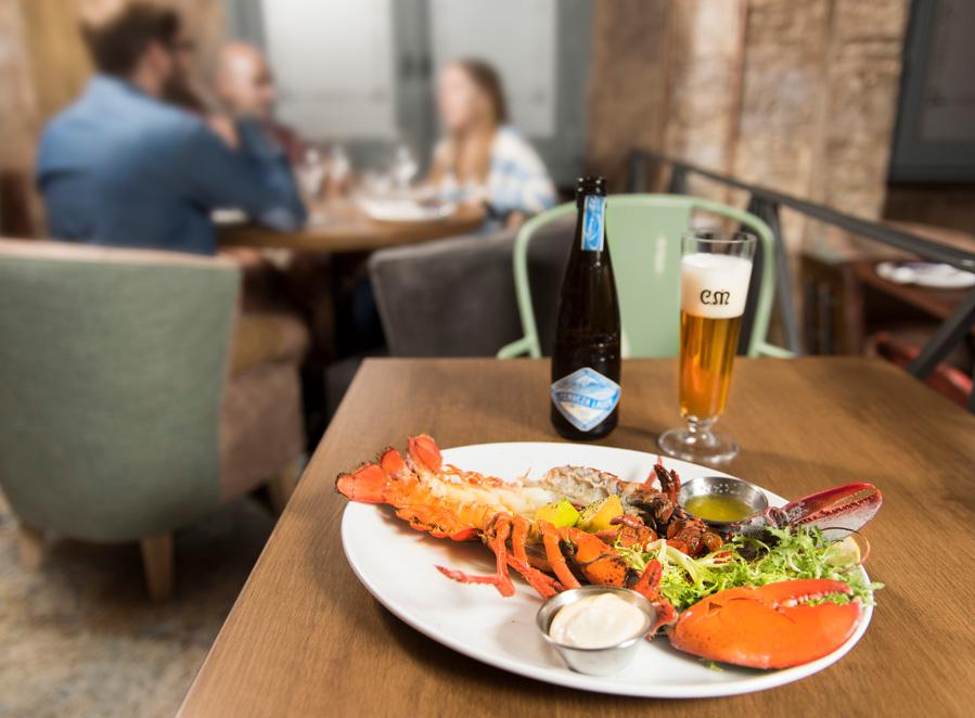 Maridaje Casimiro Mahou Cerveza Lager  - Ensaladas, una Vichyssoise o el sabor intenso a mar