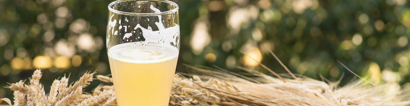 Cervezas Weissbier, una alternativa para las temperaturas suaves