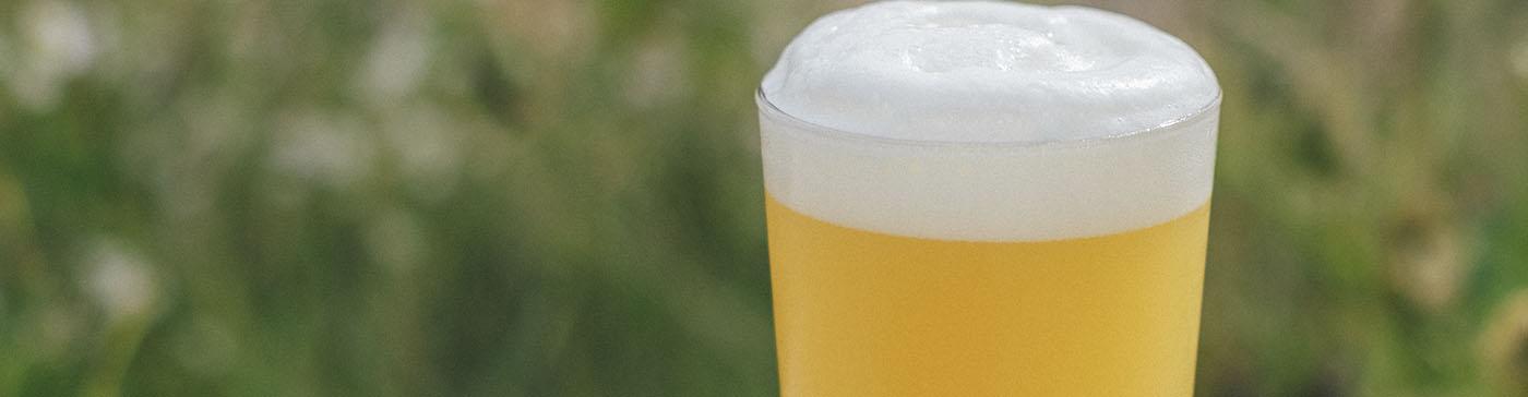 Principales clases de cervezas IPA