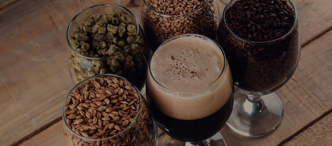¿Cuánto sabes de cerveza?
